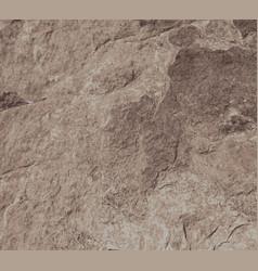Brown rock wall vector