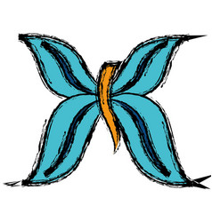 Butterfly icon image vector