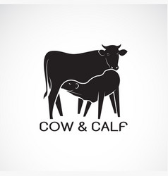 Cow and calf on white background farm animal cow vector