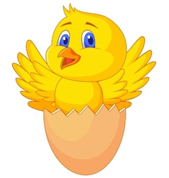 Cracked egg with cute bird inside vector image
