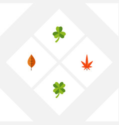 Flat icon leaves set of leaf foliage leafage and vector