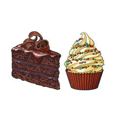 Hand drawn desserts - cupcake and piece of layered vector