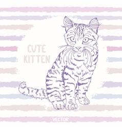 kitten sketch vector image