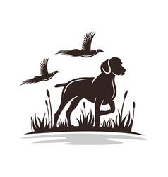 modern hunting dog logo vector image