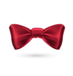 Bow tie red vector image
