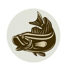 largemouth bass jumping vector image vector image