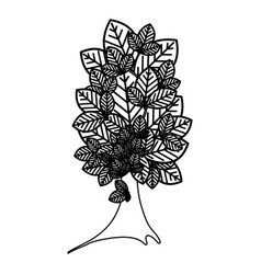 sketch silhouette tree plant with several leaves vector image vector image