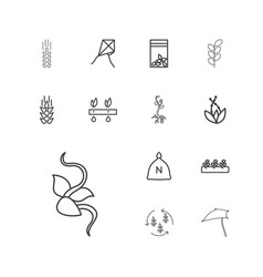 13 seed icons vector