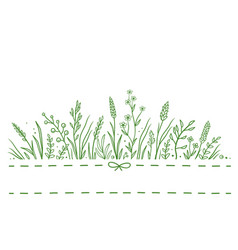 background with wild herbs vector image