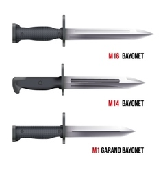Bayonet Knives for rifles vector image