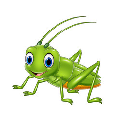 cartoon happy grasshopper vector image