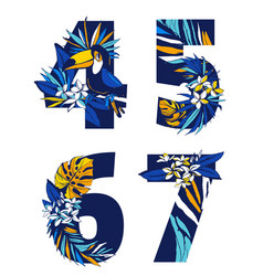 decorative set tropical pattern numbers figures vector image