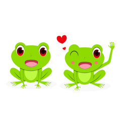 Front view cute female red eye tree frog vector