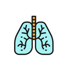 Lungs human organ flat color line icon isolated vector