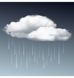 Raincloud and rain in the dark sky vector image