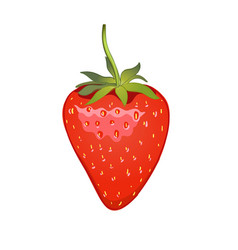 strawberry realistic icon isolated on white vector image