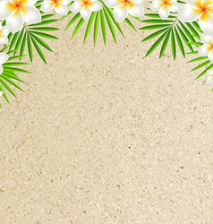 Sand Background With Frangipani vector image vector image