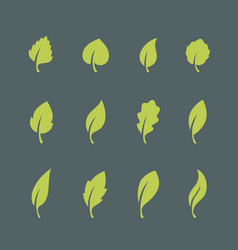 leaf icons set isolated on dark background vector image vector image