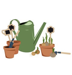 planting bulbs in pots vector image vector image