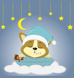 a cute corgie puppy in a green hat is sleeping on vector image