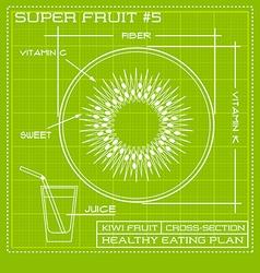 Blueprint diagram line drawing of kiwi fruit vector image
