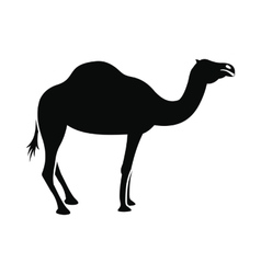 Camel icon simple style vector