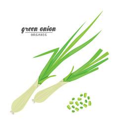 Cartoongreen onion ripe vegetables vegetarian vector