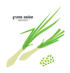 cartoongreen onion ripe vehetables vegetarian vector image