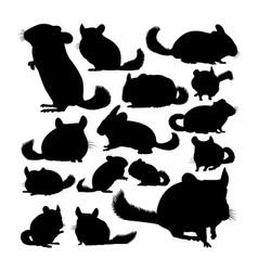 Chinchilla animal silhouettes vector