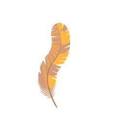 Curved carnival feather decoration on white vector