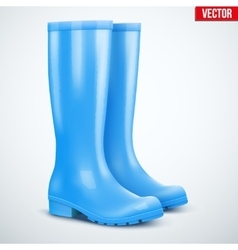 Pair of blue rain boots vector