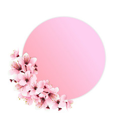 pink flower decoration vector image