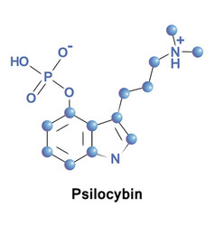 psilocybin psychedelic compound of mushrooms vector image
