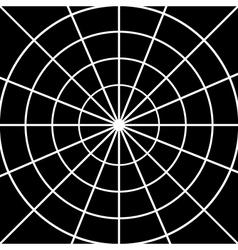 Spider web on black vector image