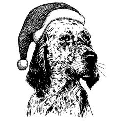 Christmas English setter dog 1 vector image vector image