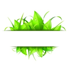 Green Grass and Leaves Banner vector image vector image