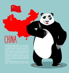 Panda and map and flag of China Chinese medvde vector image