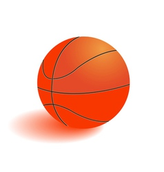 Ball for playing basketball vector image