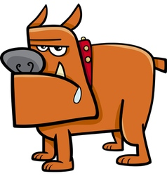 Bull dog cartoon vector