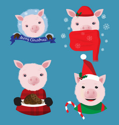 christmas collection with four funny pigs on the vector image