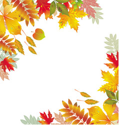 Corners with autumnal leaves vector