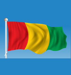 Flag of guinea vector
