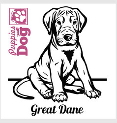 Great dane puppy sitting drawing hand sketch vector