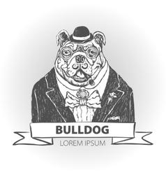 Head ferocious bulldog mascot vector