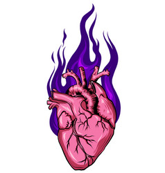 Heart hand drawn sketch isolated vector