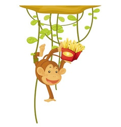 Monkey vector image