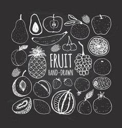 set of fruit in doodle style on the chalkboard vector image vector image