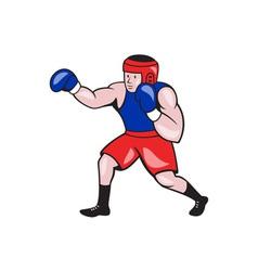 Amateur Boxer Boxing Cartoon vector image