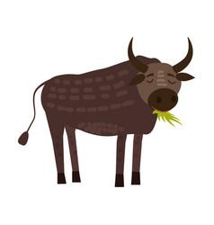 cute bull buffolo animal trend cartoon style vector image