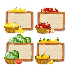 Set of fruit banner vector